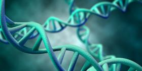 badanie genetyczne dieta